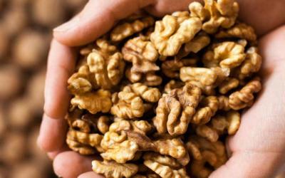 Beneficios de las nueces en una dieta equilibrada