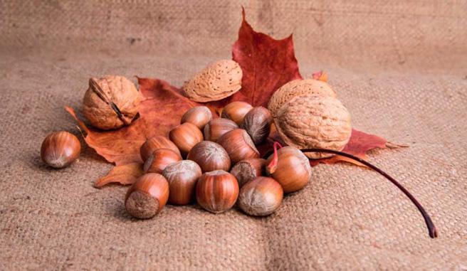 Los mejores frutos secos de la temporada otoño-invierno
